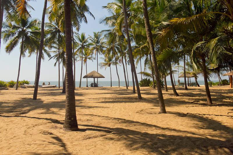 beach scene in cherai kerala