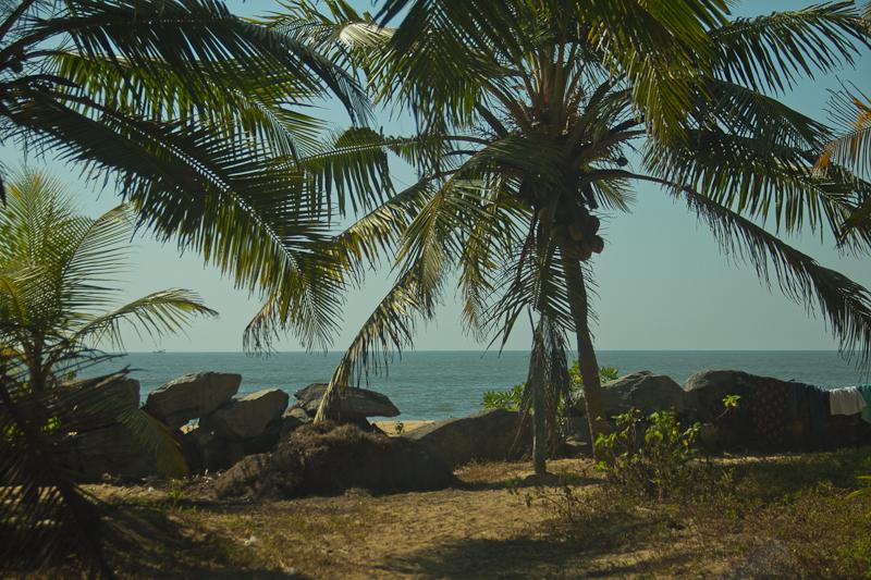 offbeat family vacation kerala